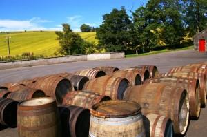Glendronach - piękny widok za destylarnią